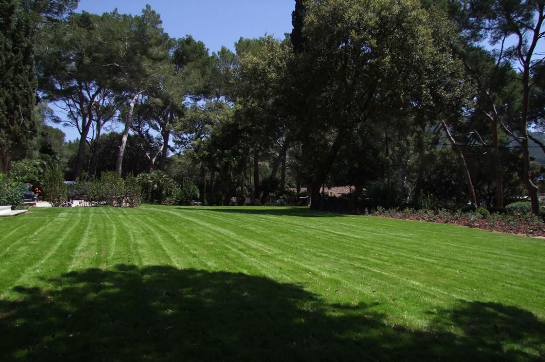 Jardineria bisanyes centro de jardineria en alcudia for Centro de jardineria